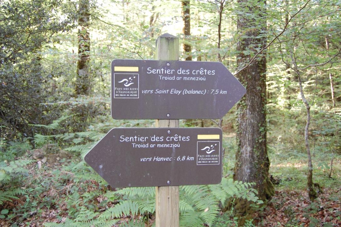 PR en forêt ou à travers la lande